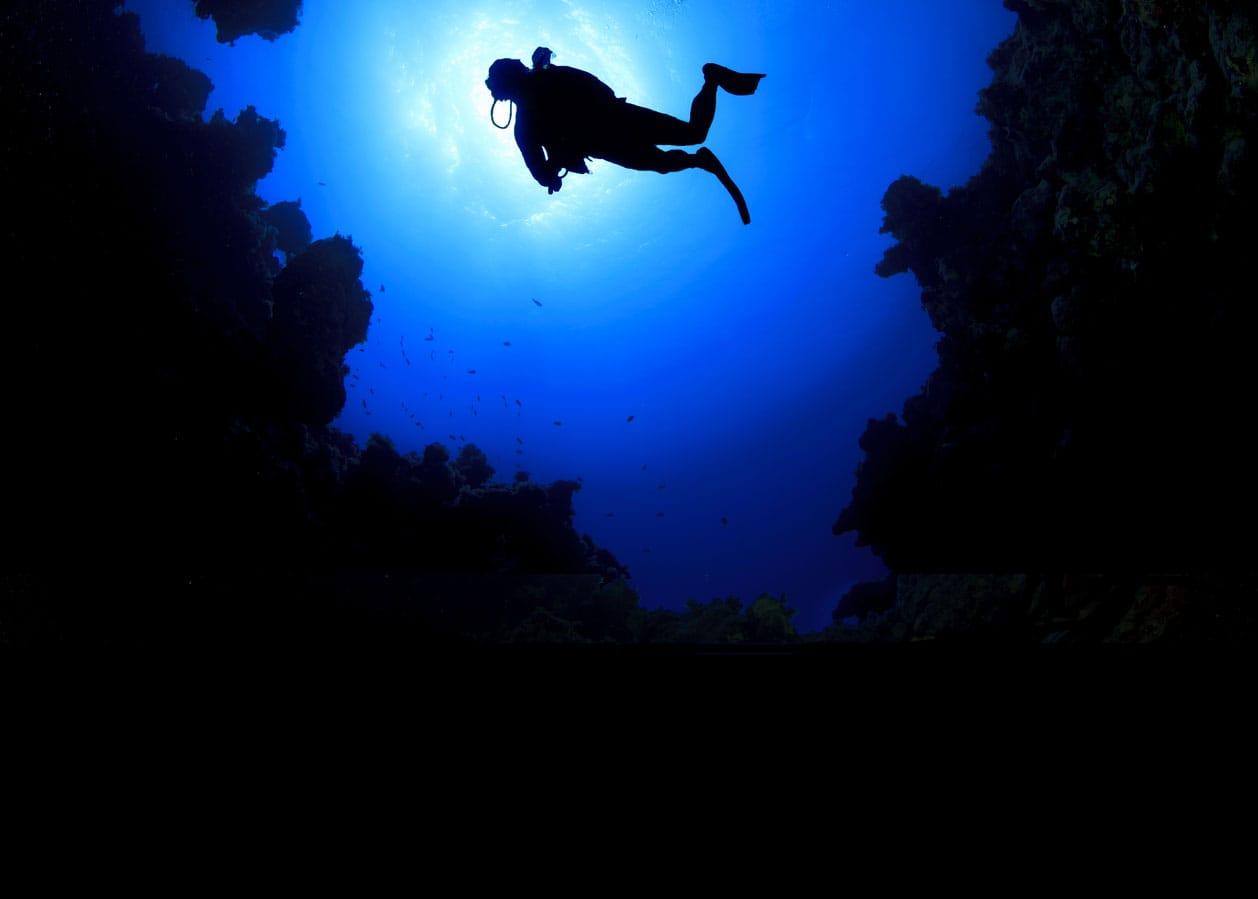 Diver night
